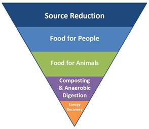 Food Hierarchy Pyramid